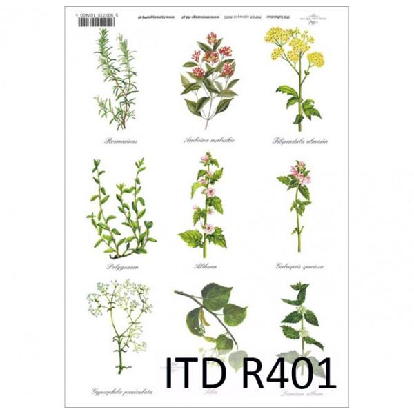 Оризова хартия за декупаж - A4 25gr - ITD Collection R401