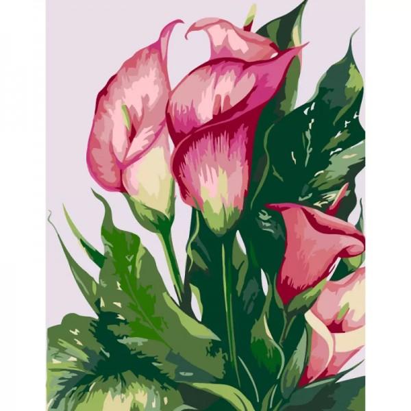 Комплект за Рисуване по Номера : Сложност I : Розови Кали