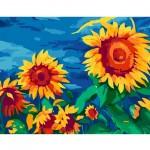 Комплект за Рисуване по Номера : Сложност II : Слънчогледи