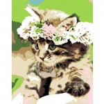 Rosa комплект за Рисуване по Номера - Акрилни Бои - Стандарт - Коте