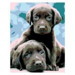 Rosa комплект за Рисуване по Номера - Акрилни Бои - Стандарт - Кученца