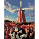 Rosa комплект за Рисуване по Номера - Акрилни Бои - Стандарт - Вятърна Мелница