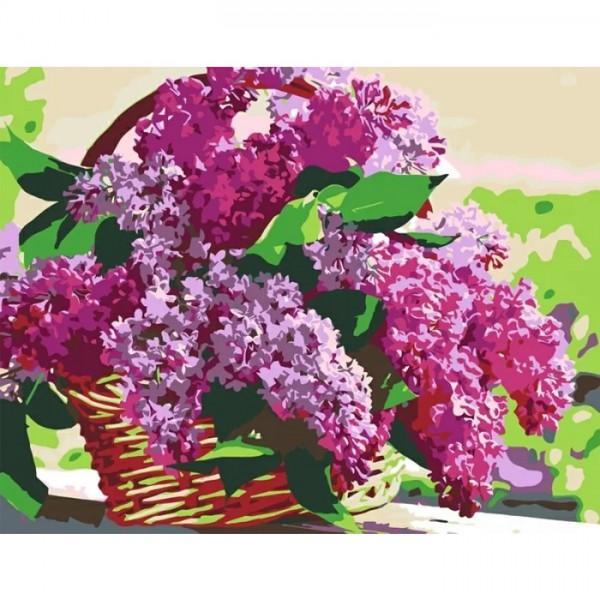 Rosa комплект за Рисуване по Номера с Акрилни Бои : Люляк в Кошница