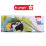Цветни Моливи : Bruynzeel : за Подарък : 45 Цвята : Папагал